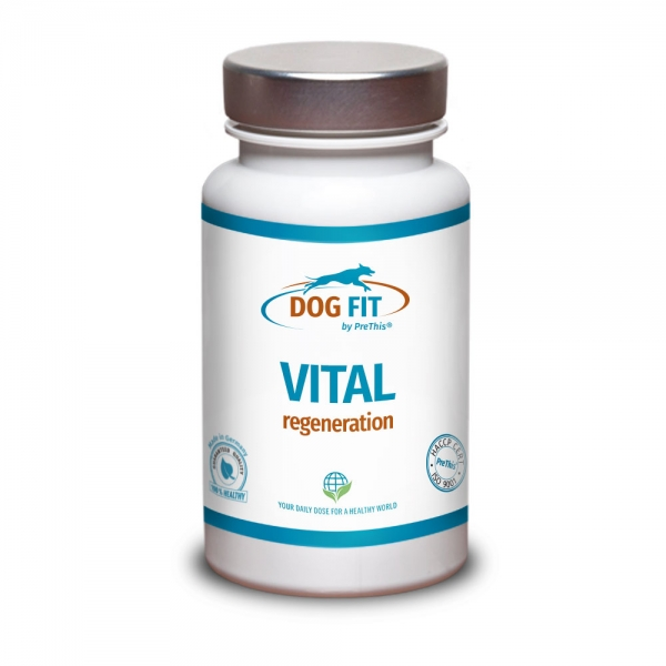 DOG FIT by PreThis® JOINTS collagen